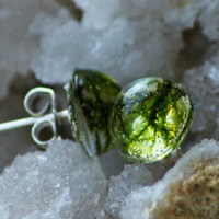 REAL MOSS EARRINGS - Transparent Resin Jewelry