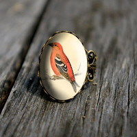 Vintage bird - adjustable ring