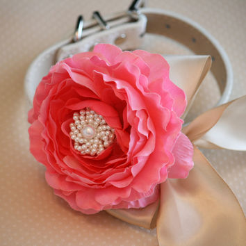 Pink Peonies and Champagne Floral Dog Collar Wedding Accessory, Pink Lovers