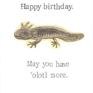 Happy Birthday May You Have Olotl More Card | Axolotl Funny Salamander Pun Animal Humor Weird Men Women