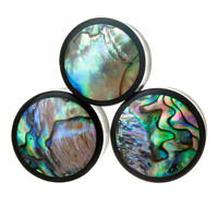 Arang Ebony and Abalone Inlay Wood Plugs (6mm-16mm)