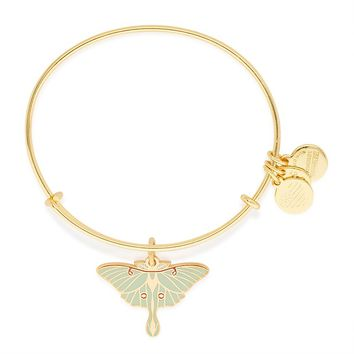 Luna Moth Charm Bangle