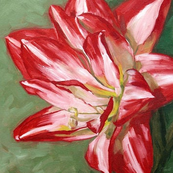 Flower painting giclee on canvas with gallery by FinnellFineArt