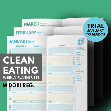 Midori Insert Weekly Meal planner Midori Refill, Midori Traveler's Notebook, Healthy Eating Set, Health Planner