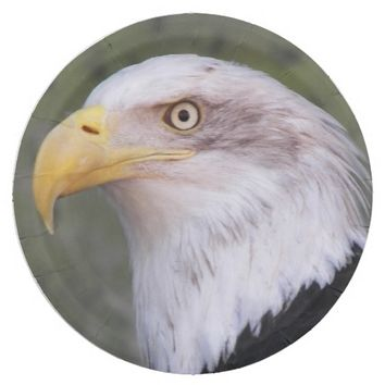 American Bald Eagle Photo Paper Plate