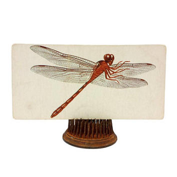 Vintage Dragonfly Insect Flash Card Art Decor Nature Bug Color Illustration Paper Ephemera Collage Crafts Mixed Media Altered Supply