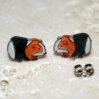 Cutest Black Orange and White Guinea Pig, Illustrated Hand-Made Stud Earrings
