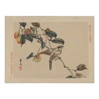 Bird Perched on Persimmon Tree - Japanese Vintage