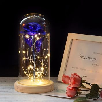 Large Beauty and the Beast rose, Rose in glass dome, forever rose, red rose, preserved rose, Belle rose, special romantic gift