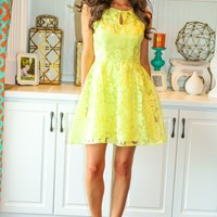 Wake Lively Dress
