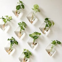 Wall Hanging Glass Planter Indoor Home Decor