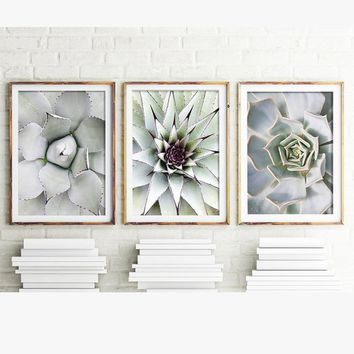 without framed3 Pieces Beautiful Cactus Large Size HD Modern Home Wall Decor Abstract Canvas Print Oil Painting Wall Art Picture