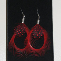 Red Feather Earrings Silver Plated Curled Hoops Black and Red Spotted Polka Dot Handmade