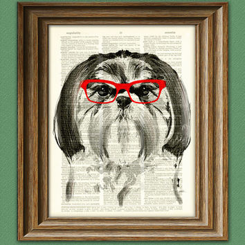 Dog Smarty Pants Shih tzu with red glasses illustration beautifully upcycled dictionary page book art print
