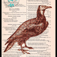 Brown Vulture Drawing Beautifully Upcycled Vintage Dictionary Page Book Art Print, Bird Print