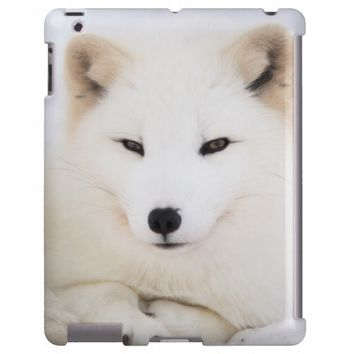 Cute white fur arctic fox Ipad case