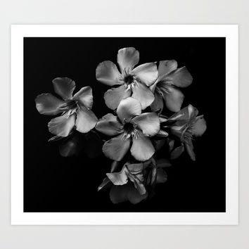 Oleander flowers in black and white Art Print by VanessaGF