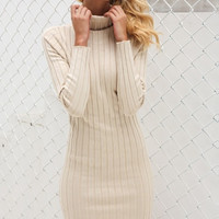 Bonnie Turtleneck Dress