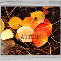 Fall Home Decor, Wall art, Autumn Photo Aspen Photography, leaf Photograph, Typography Print, 8x10 Photo red yellow