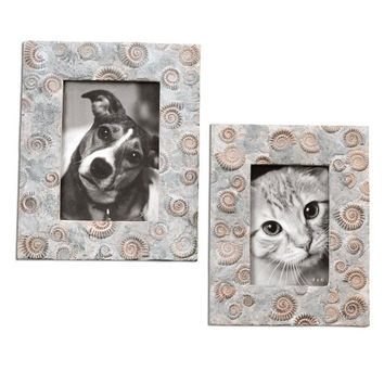 Uttermost Spirula Photo Frames S/2 - 18566