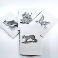 Mini Notebooks | Woodland Journals | Pocket Notebooks | Jotters | Animal Notebooks | Fox | Chipmunk | Deer | Owl | Cahiers | Blank Notebooks