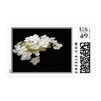White Floral Canvas Stamps