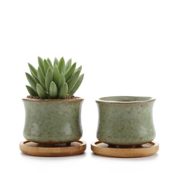 """Rachel's choice 2.5""""Spring Serial NO.3 Slim Shape Sucuulent Cactus Plant Pots Flower Pots Planters Containers Window Boxes With Bamboo Tray Green Set of 2"""