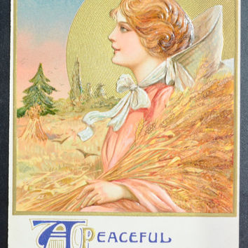 Thanksgiving Postcard Samuel Schmucker John Winsch Publishing 1911 Golden Beauty