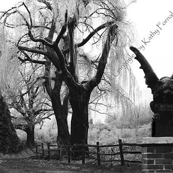 "Gargoyle Photography, Black and White Photography, Surreal Dark Gothic Gargoyle, Spooky Tree Landscape, Gothic Fine Art Photograph 8"" x 12"""