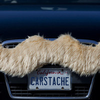 Carstache® | Glorious mustaches for cars and trucks