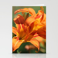 Lilies Come Lately Stationery Cards by Theresa Campbell D'August Art