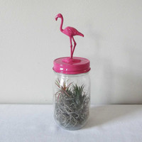 Recycled Glass Jar - Flamingo in Hot Pink