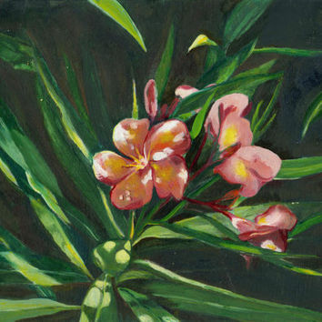 Flowers in the garden light oil painting on thin by brandycattoor