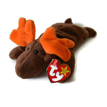 Free US Shipping, Ty Beanie Babies, Chocolate The Moose, Retired NWT, DOB February 14 1994, Vintage Stuffed Toy, Vintage Plush, Collectible