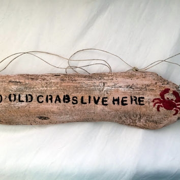Hand Painted Driftwood Sign Driftwood Wall Decor Drift Wood Art  Rustic Decor Beach Decor Upcycled Recycled Ecofriendly Lake Erie Driftwood
