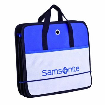 Samsonite Deluxe Car & Trunk Organizer