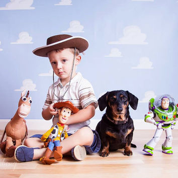 10ft x 10ft Vinyl Photography Backdrop / Toy Story Clouds Inspired / Birthday Photo Booth