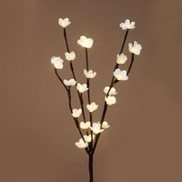 Brown 24 Inch Flower Branch With 20 LED Lights - Battery Operated