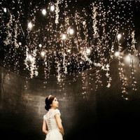 2M 20 led AA Battery Powered Decoration LED Copper Wire Fairy String Lights Lamps for Christmas Holiday Wedding Party YD31