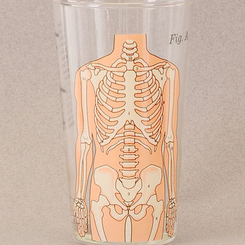 Anatomical Skeleton Mixer Glass