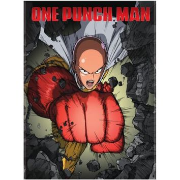 One Punch Man Standard Edition (DVD) - Walmart.com