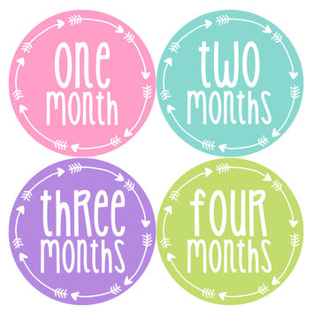 Baby Girl Monthly Milestone Age Stickers Style #1011