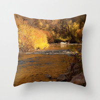 Art Throw Pillow Cover Rustic Fall photography rustic photo Indoor Outdoor photograph home decor mustard yellow orange autumn landscape