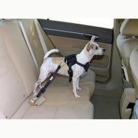 Bergan Dog Travel Harness Small Blue