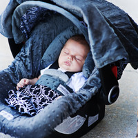 Knott Carseat Canopy Whole Caboodle
