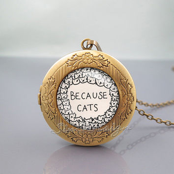 Cat Photo Locket Necklace, Because cats cat, vintage pendant Locket Necklace