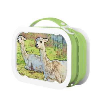 White Alpacas on Farm Lunch Box