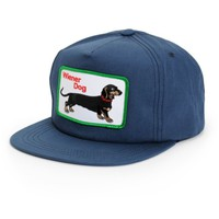 Dog Limited Wiener Dog Snapback Hat