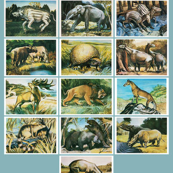From Time Immemorial. Prehistoric Animals (Artist I. Chevereva) - Set of 16 Vintage Postcards - Printed in the USSR, Fine Art, Moscow, 1986