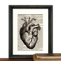 Heart Medical Anatomy Print Vintage Medical by QuaintandCurious